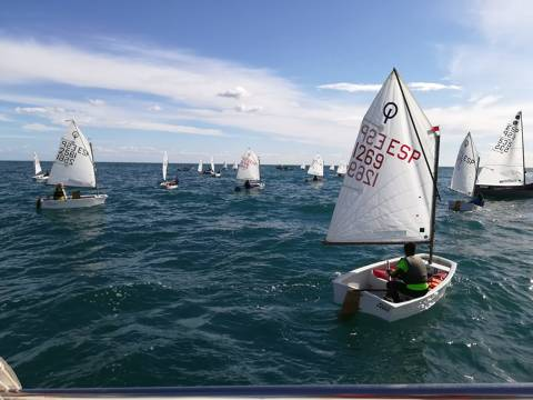 Trofeu Tardor N3 Optimist i Open
